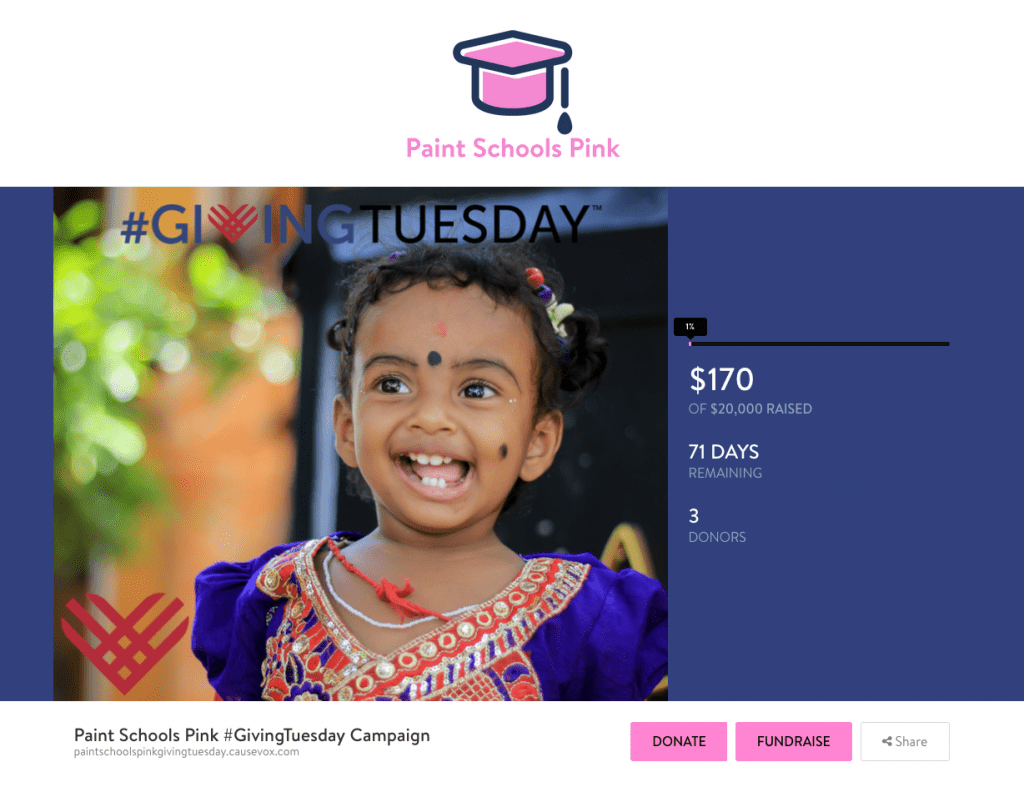 things-successful-givingtuesday-campaigns-common-paint-schools-pink
