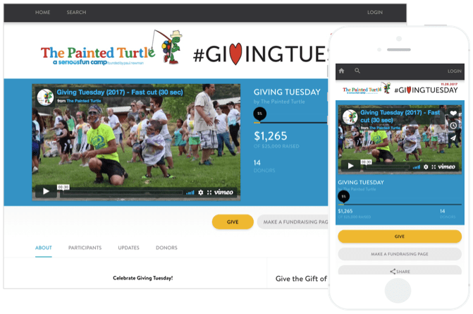 The Painted Turtle GivingTuesday 2017