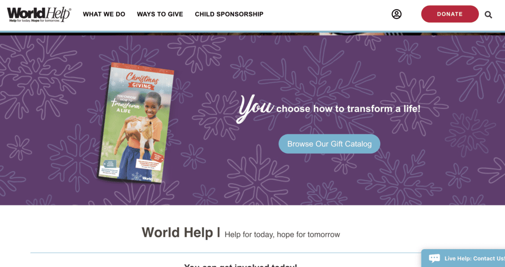 world-help-year-end-giving-website
