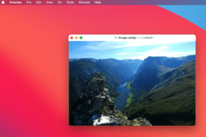 WebP to JPG: How to Convert Images